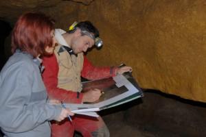Étape de contrôle du relevé in situ (panneau II G secteur 11)